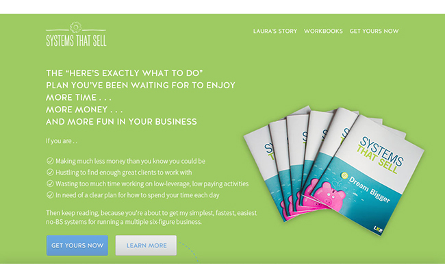 Sales Page Design for a System to Help Business Owners Streamline Their Sales