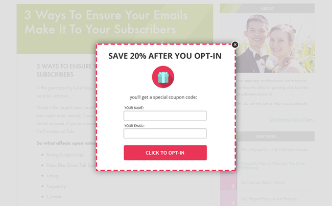 Template Styles for a Well-Regarded Popup/Lead Generation App